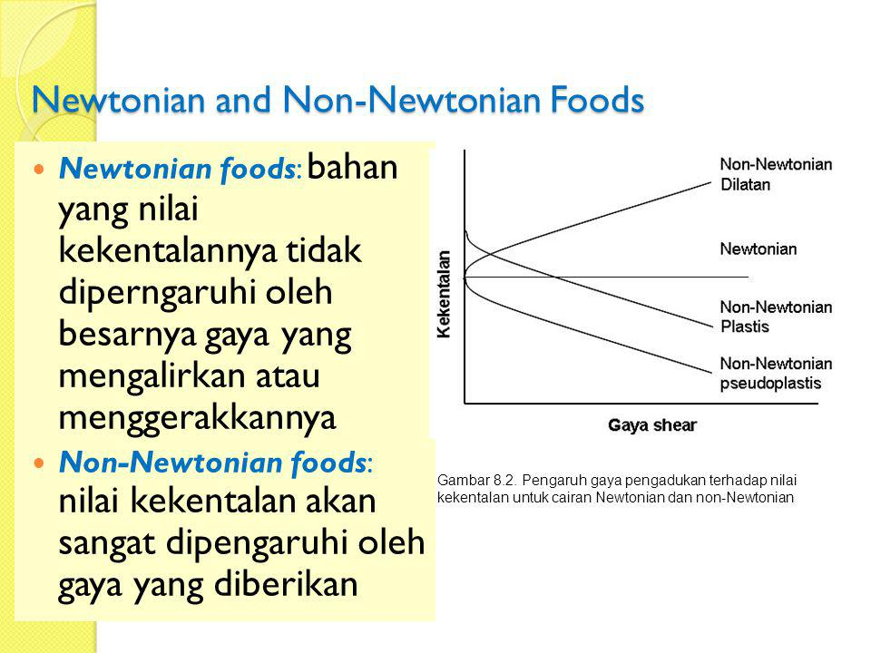 Newtonian and Non-Newtonian Foods