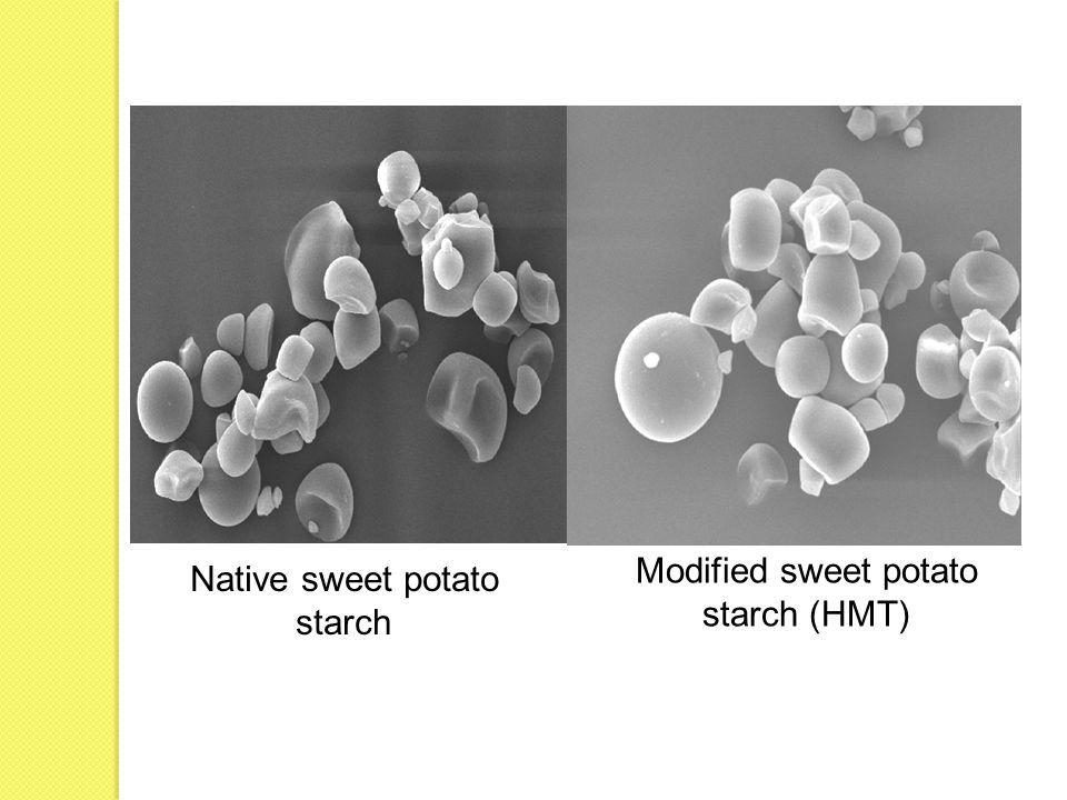 Modified sweet potato starch (HMT) Native sweet potato starch