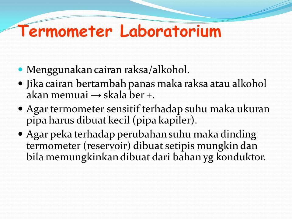 Termometer Laboratorium