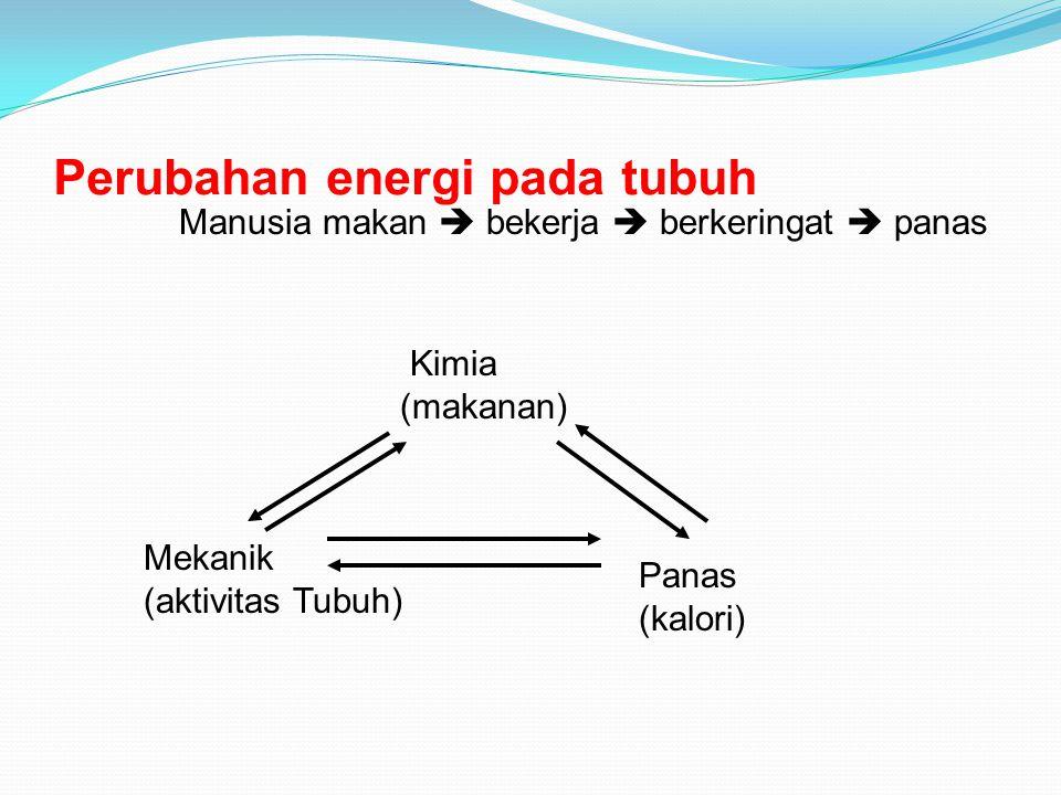 Perubahan energi pada tubuh
