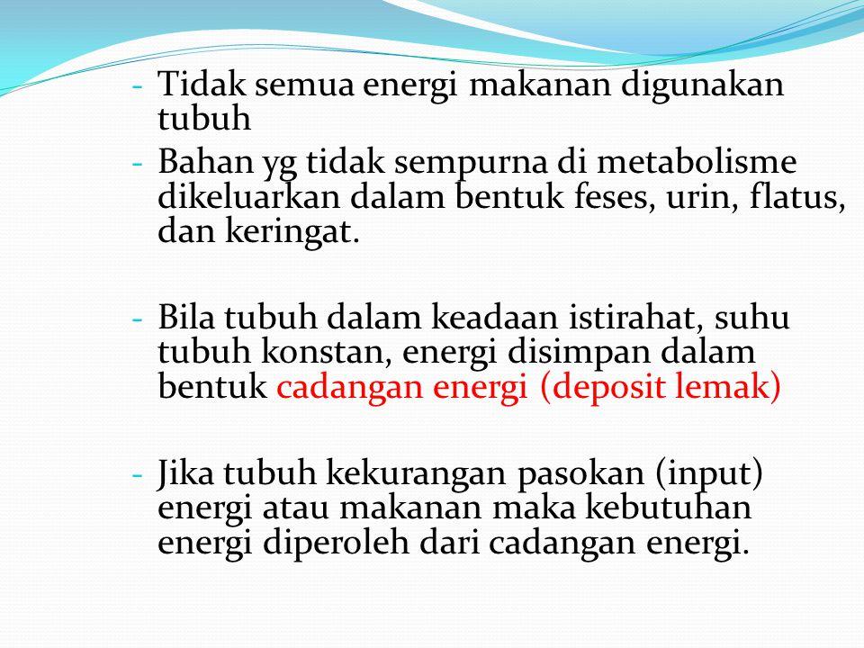 Tidak semua energi makanan digunakan tubuh