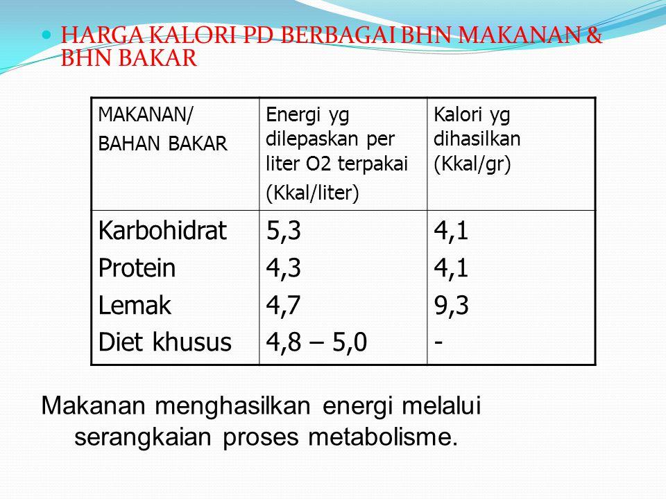 Makanan menghasilkan energi melalui serangkaian proses metabolisme.