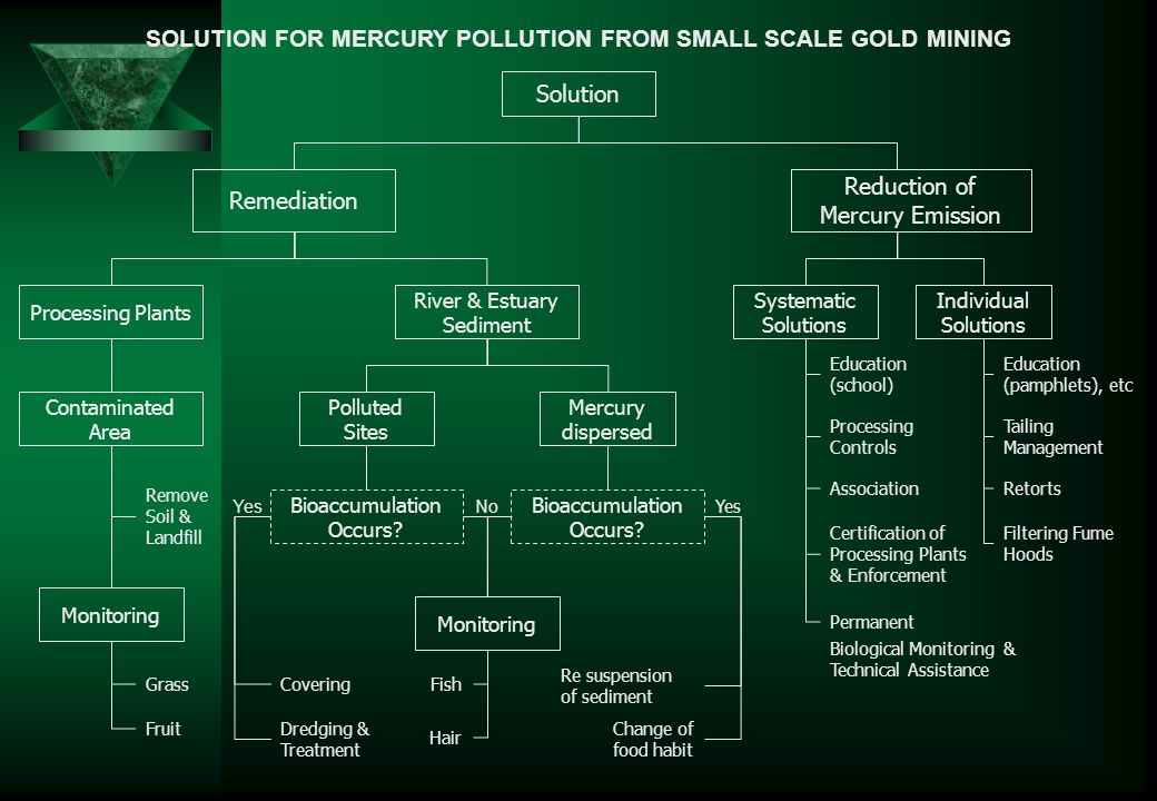 SOLUTION FOR MERCURY POLLUTION FROM SMALL SCALE GOLD MINING