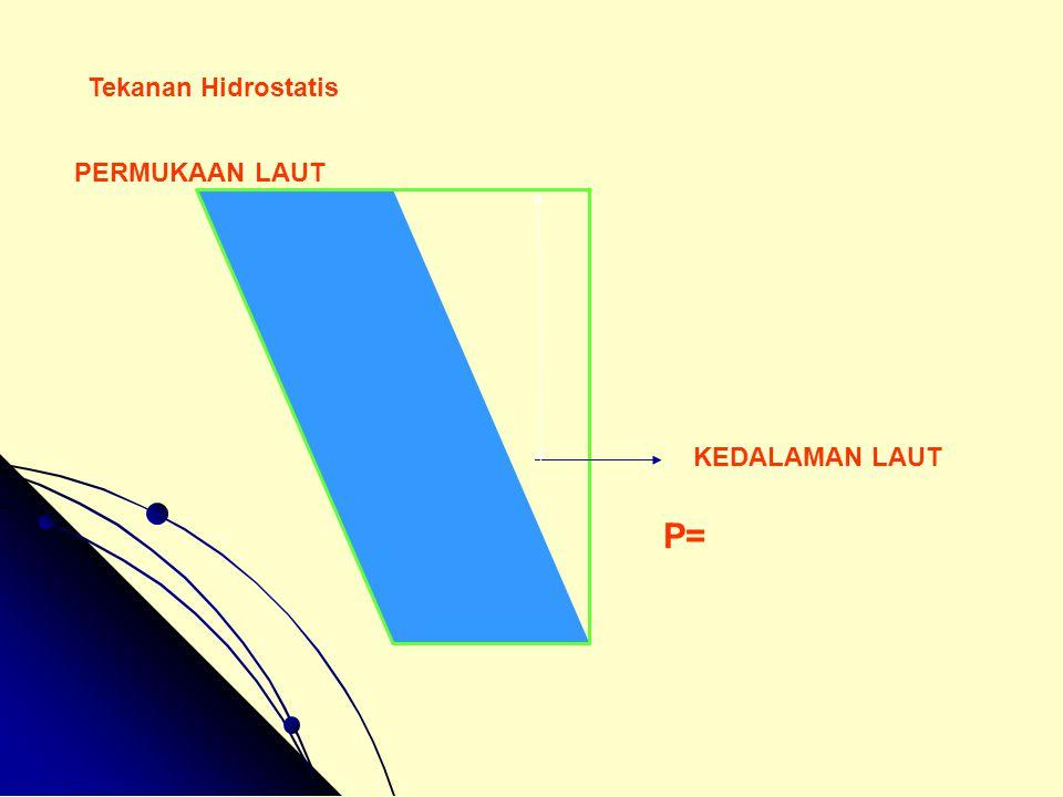 Tekanan Hidrostatis PERMUKAAN LAUT KEDALAMAN LAUT P=
