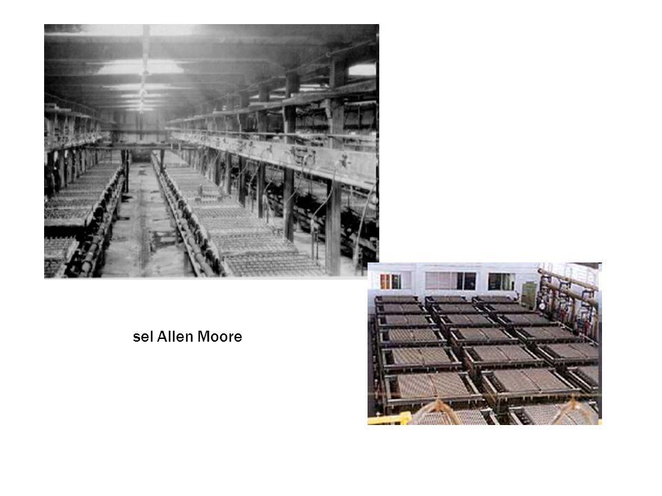 sel Allen Moore