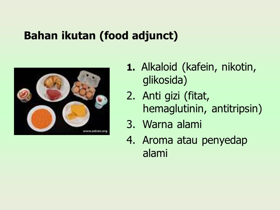 Bahan ikutan (food adjunct)