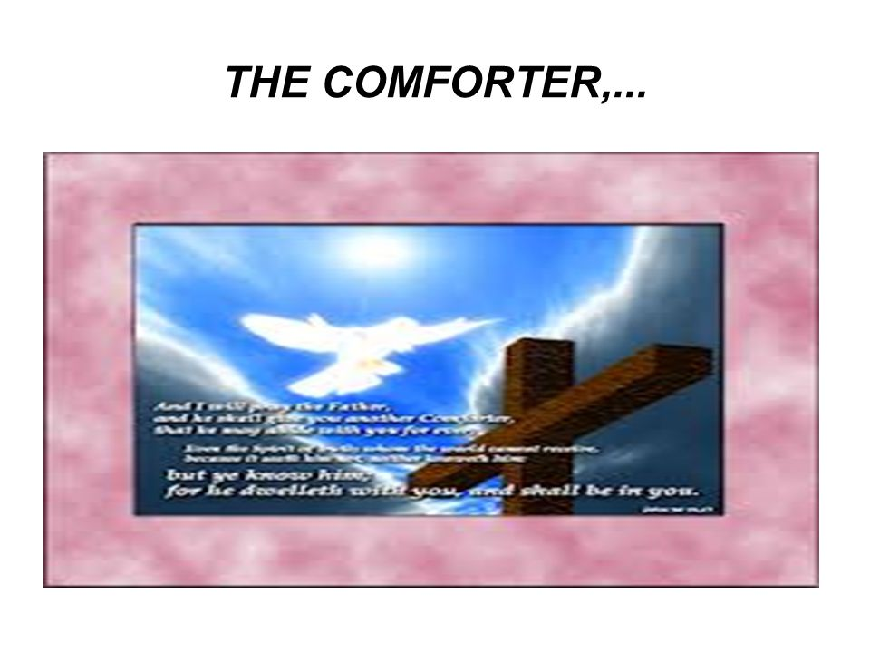 THE COMFORTER,...
