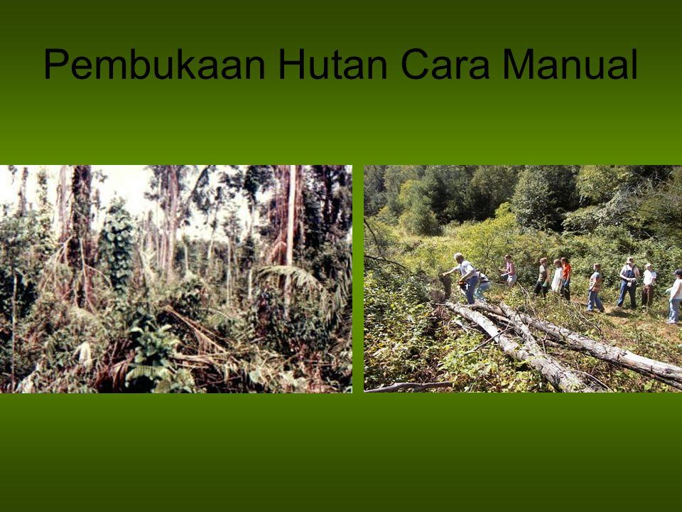Pembukaan Hutan Cara Manual
