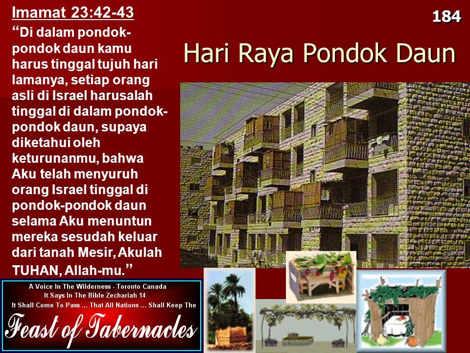 Hari Raya Pondok Daun Imamat 23:42-43 184
