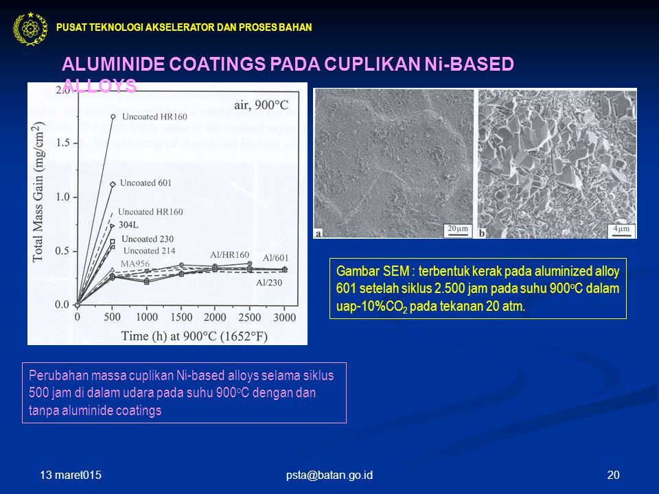 ALUMINIDE COATINGS PADA CUPLIKAN Ni-BASED ALLOYS