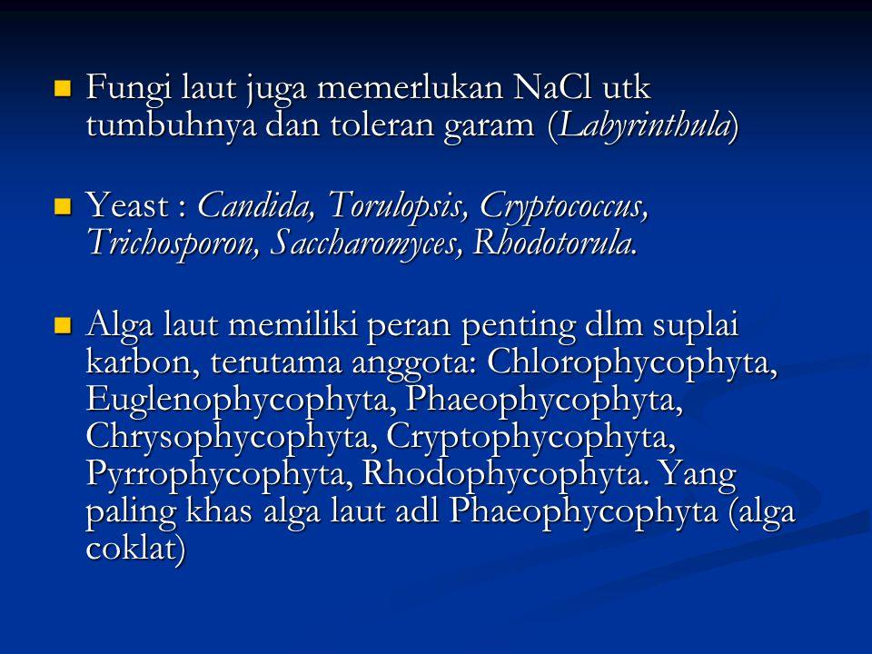 Fungi laut juga memerlukan NaCl utk tumbuhnya dan toleran garam (Labyrinthula)
