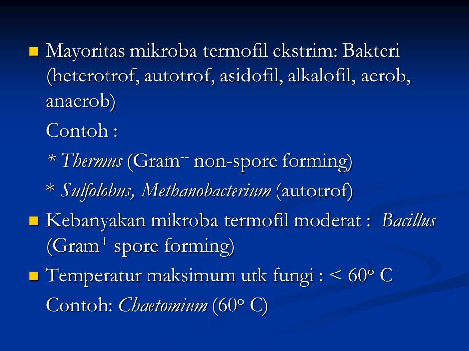 Mayoritas mikroba termofil ekstrim: Bakteri (heterotrof, autotrof, asidofil, alkalofil, aerob, anaerob)