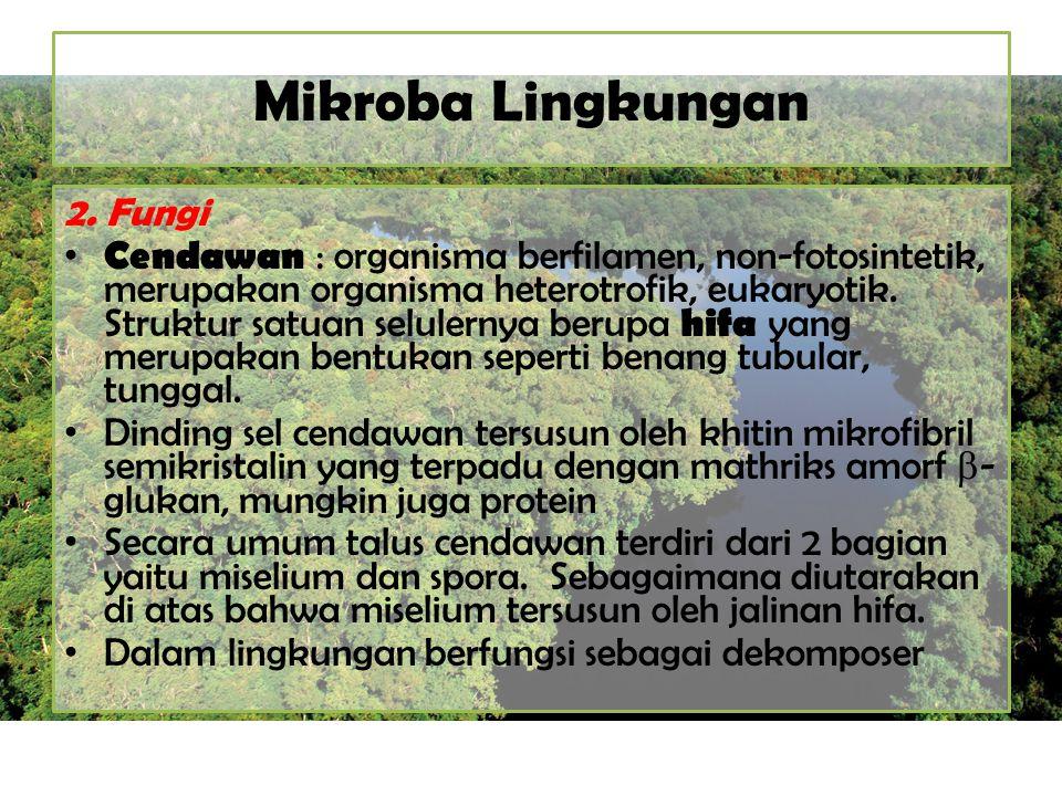 Mikroba Lingkungan 2. Fungi