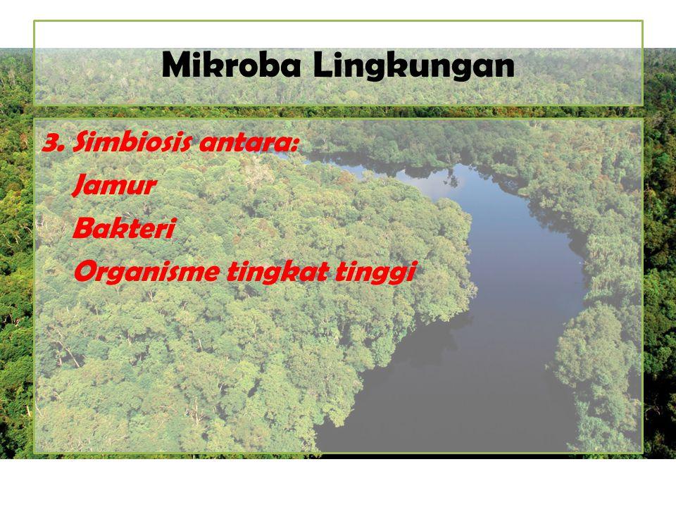 Mikroba Lingkungan 3. Simbiosis antara: Jamur Bakteri