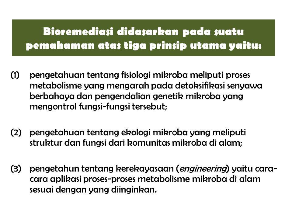 Bioremediasi didasarkan pada suatu pemahaman atas tiga prinsip utama yaitu: