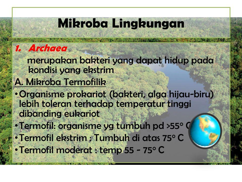Mikroba Lingkungan Archaea