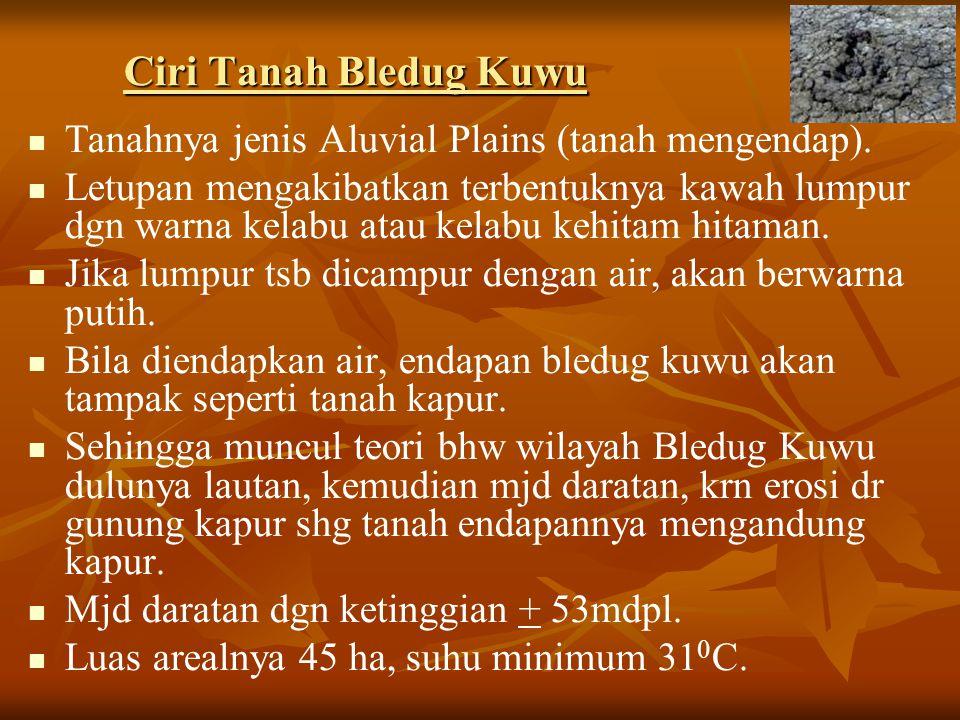 Ciri Tanah Bledug Kuwu Tanahnya jenis Aluvial Plains (tanah mengendap).