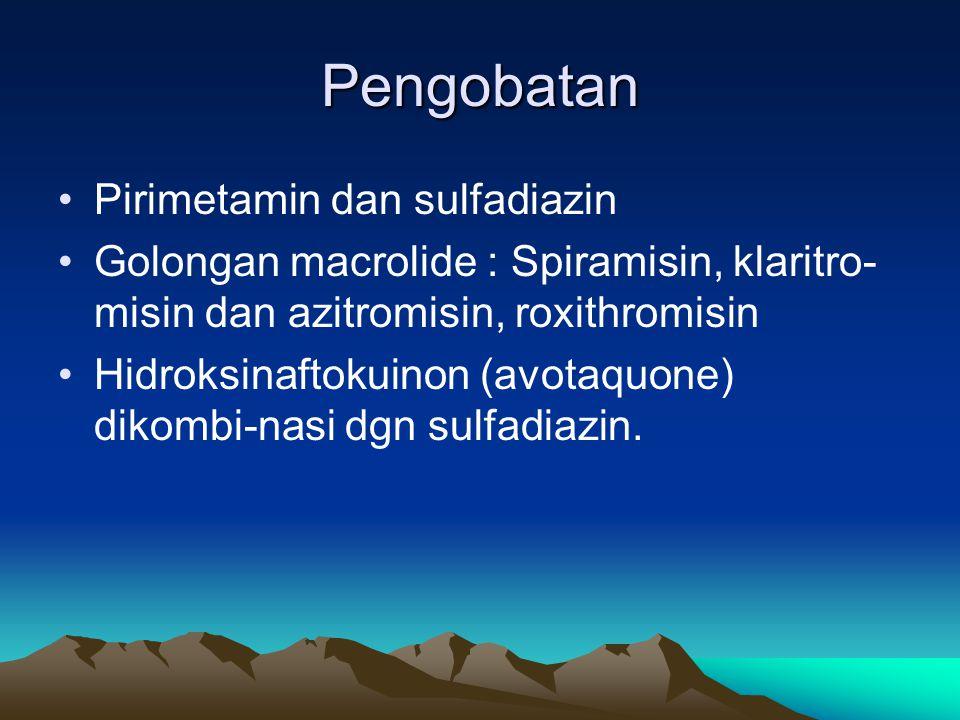 Pengobatan Pirimetamin dan sulfadiazin