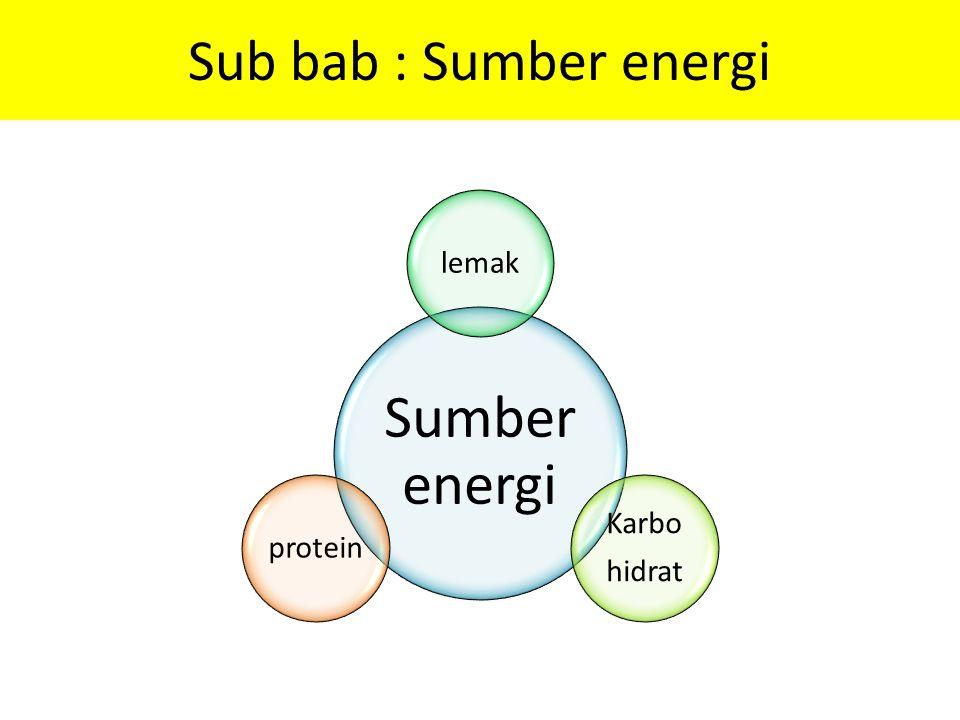 Sub bab : Sumber energi Sumber energi lemak Karbo hidrat protein
