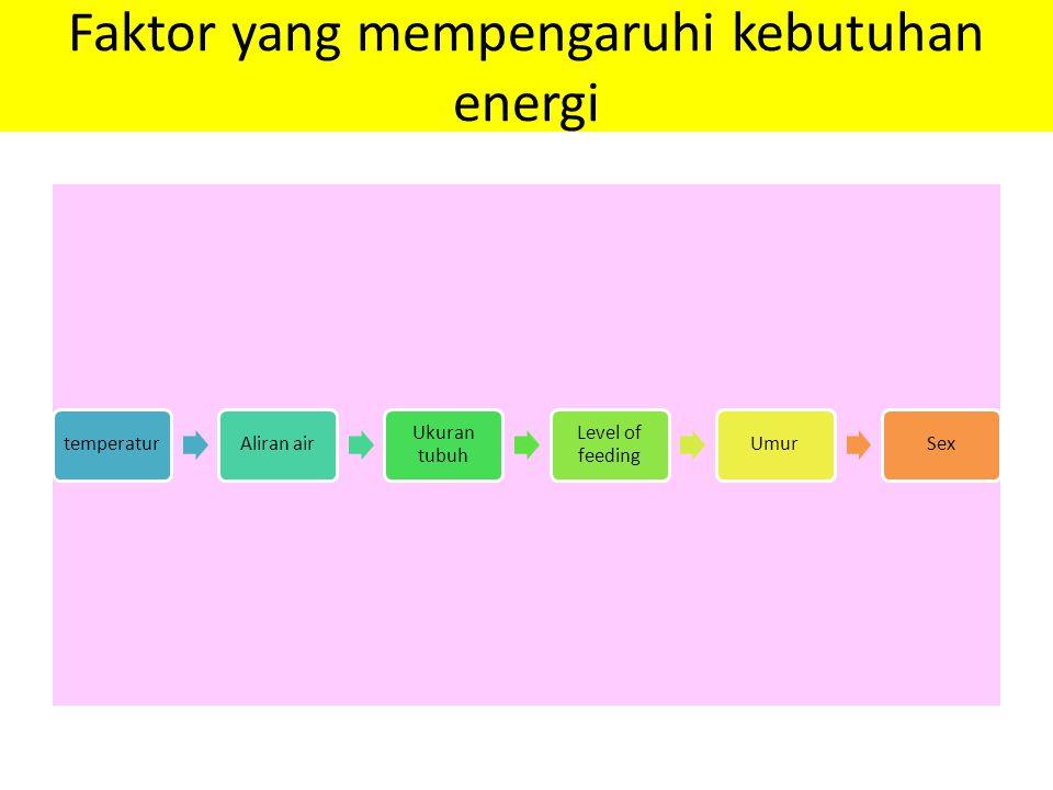 Faktor yang mempengaruhi kebutuhan energi