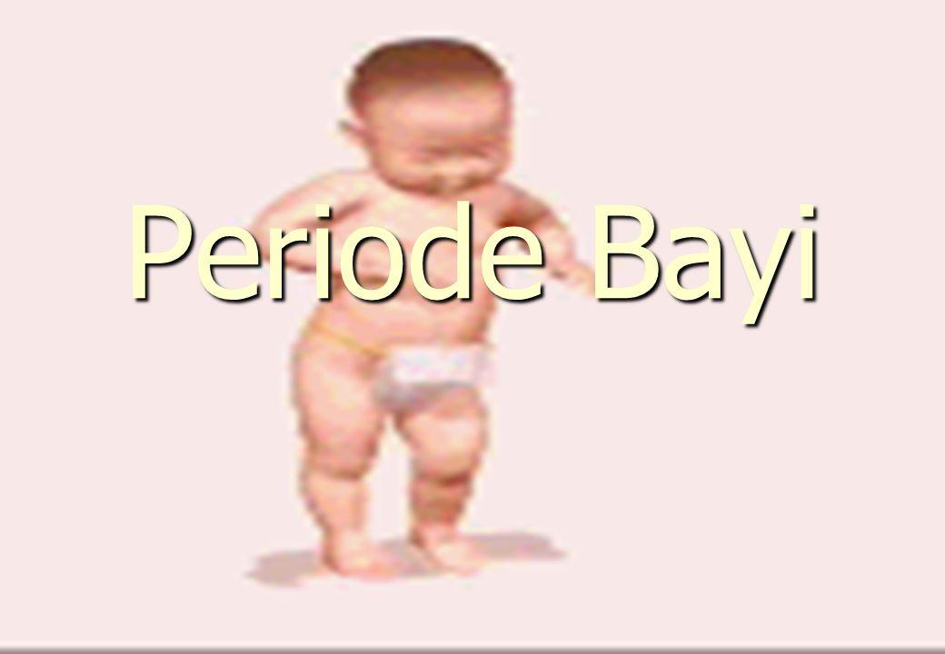 Periode Bayi