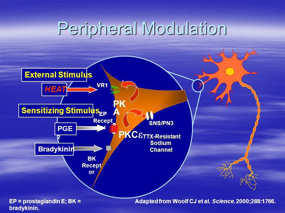 Peripheral Modulation