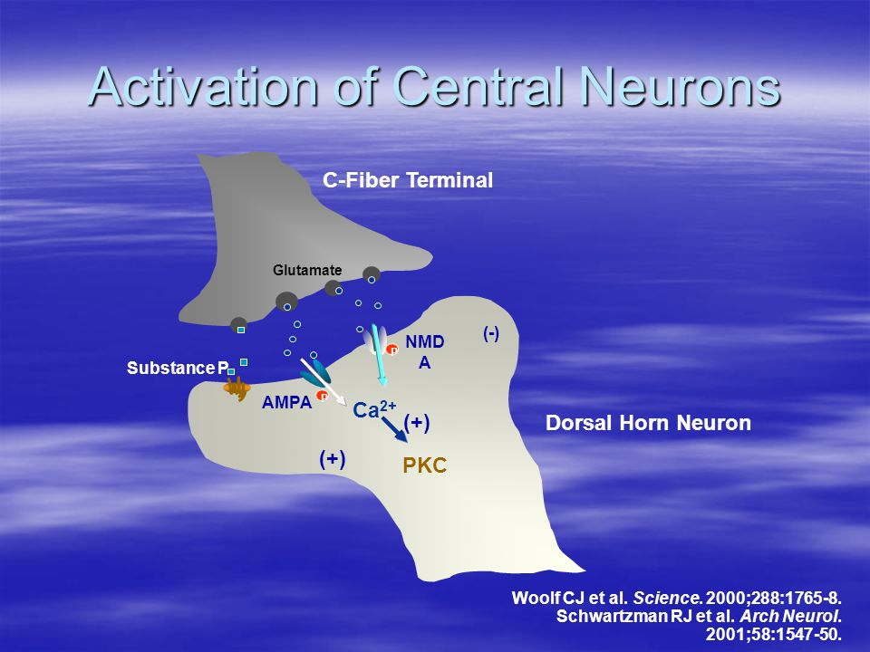 Activation of Central Neurons