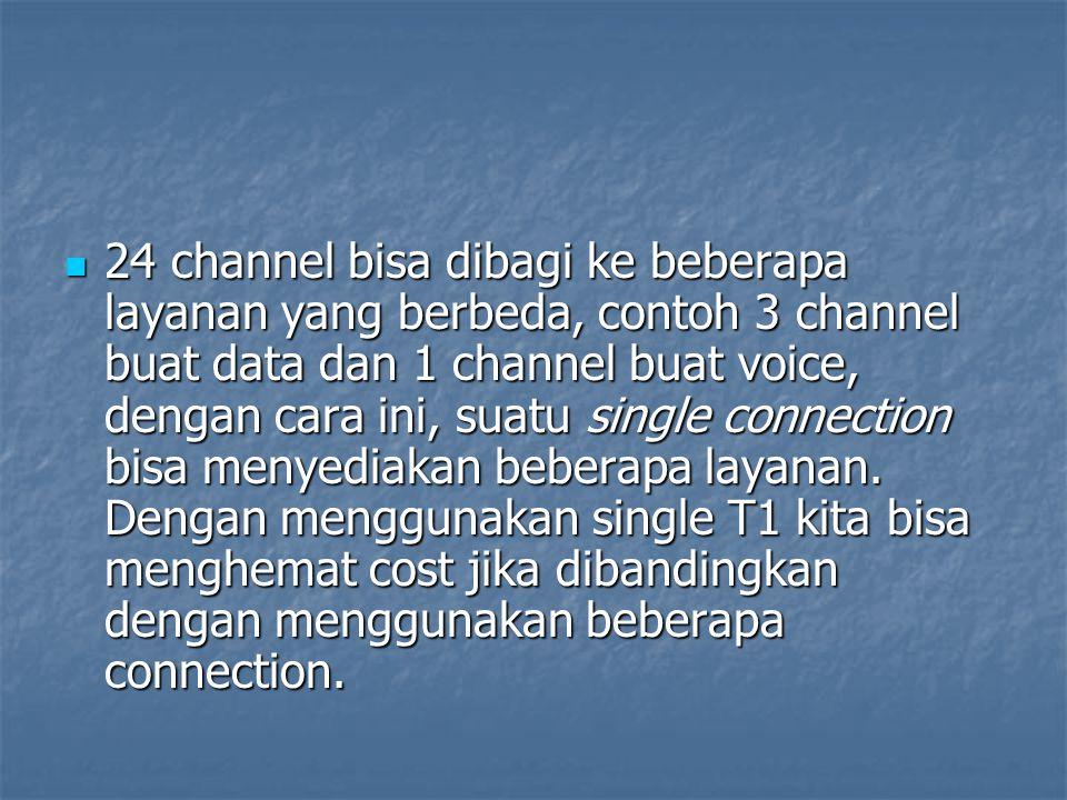 24 channel bisa dibagi ke beberapa layanan yang berbeda, contoh 3 channel buat data dan 1 channel buat voice, dengan cara ini, suatu single connection bisa menyediakan beberapa layanan.