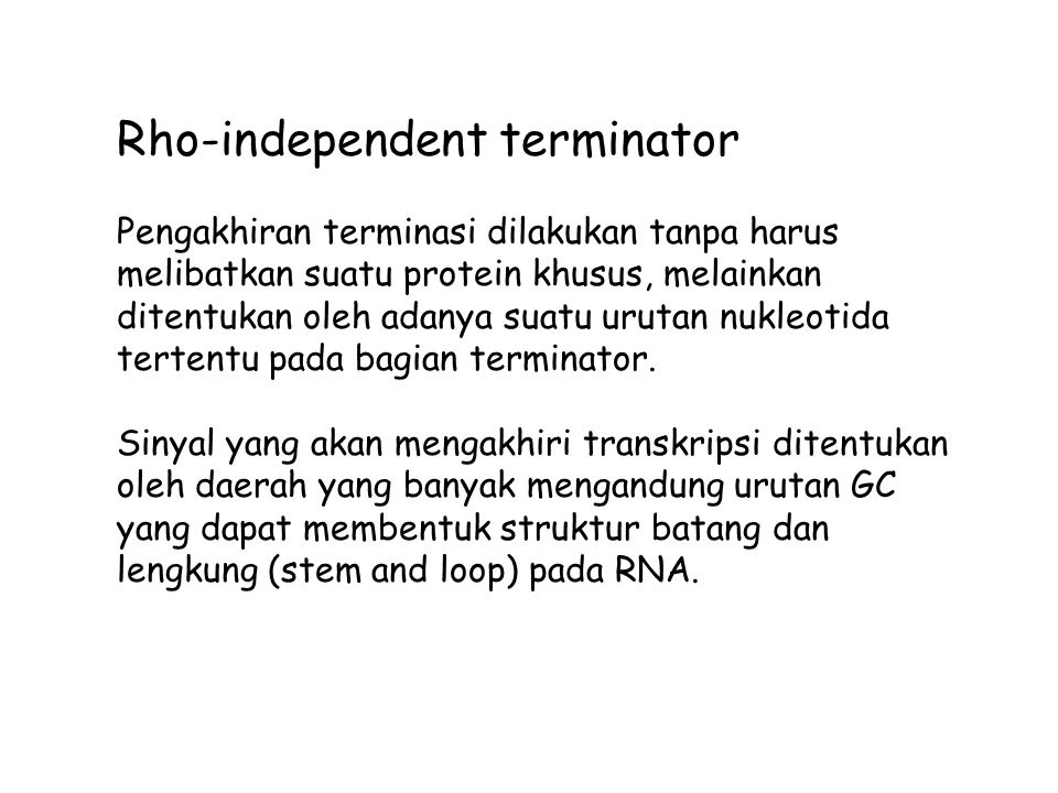 Rho-independent terminator