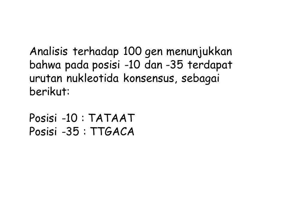 Analisis terhadap 100 gen menunjukkan bahwa pada posisi -10 dan -35 terdapat urutan nukleotida konsensus, sebagai berikut: