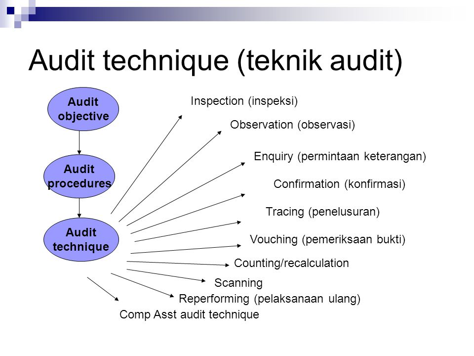 Audit technique (teknik audit)