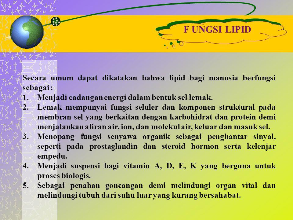 F UNGSI LIPID Secara umum dapat dikatakan bahwa lipid bagi manusia berfungsi sebagai : Menjadi cadangan energi dalam bentuk sel lemak.