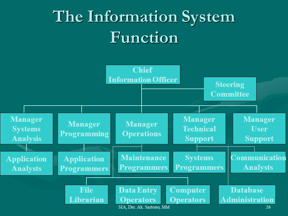 The Information System Function