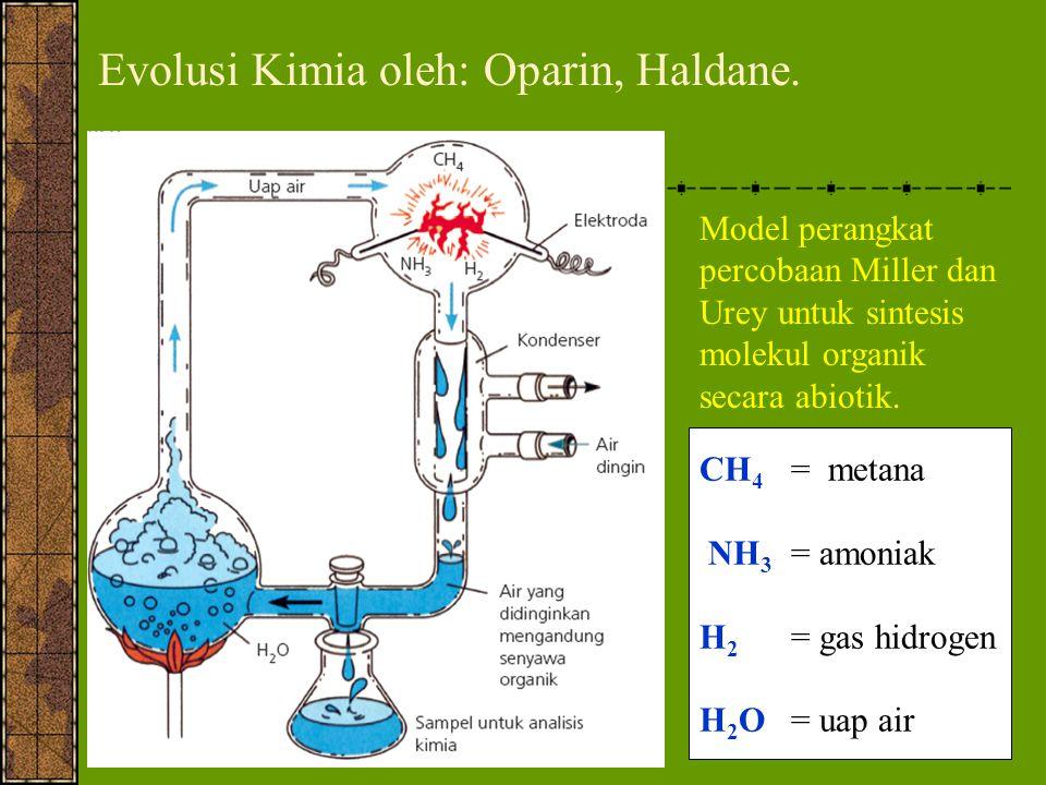 Evolusi Kimia oleh: Oparin, Haldane.
