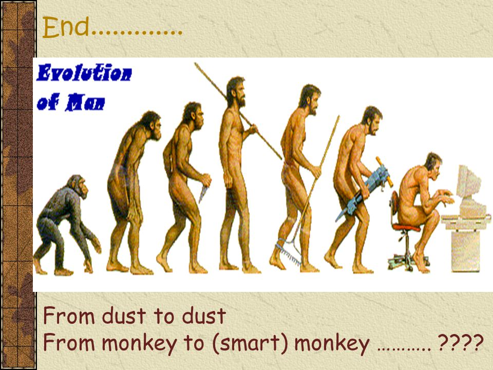 End............. From dust to dust From monkey to (smart) monkey ………..