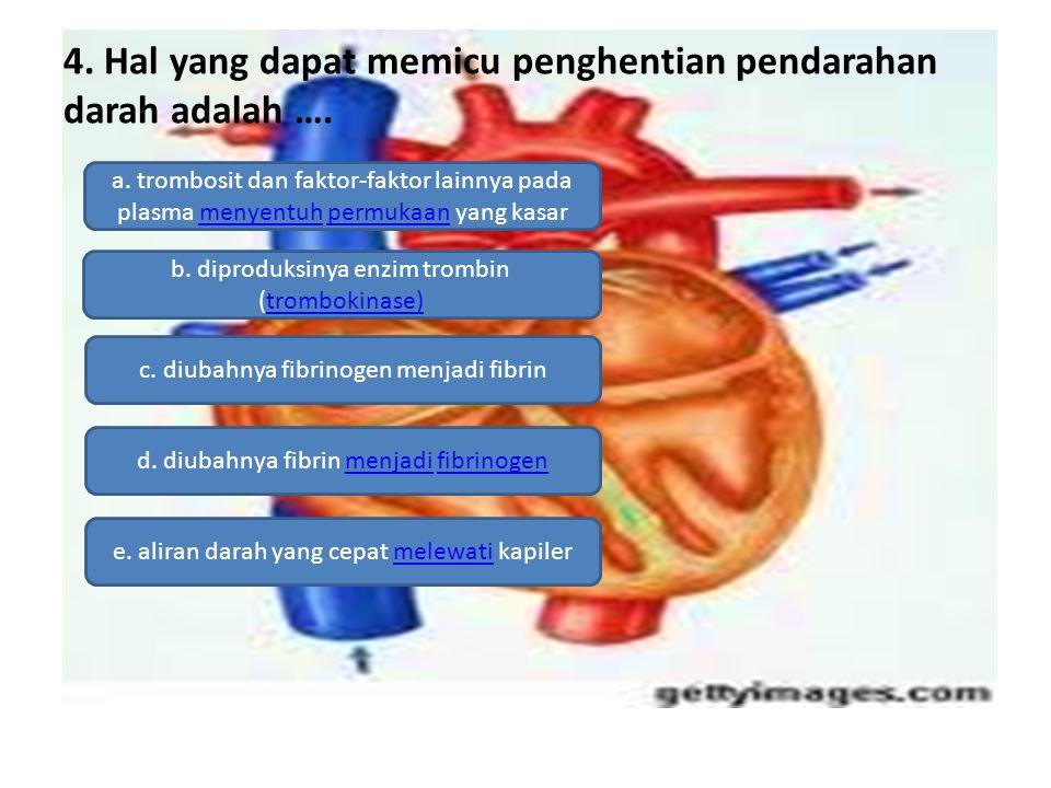 4. Hal yang dapat memicu penghentian pendarahan darah adalah ….