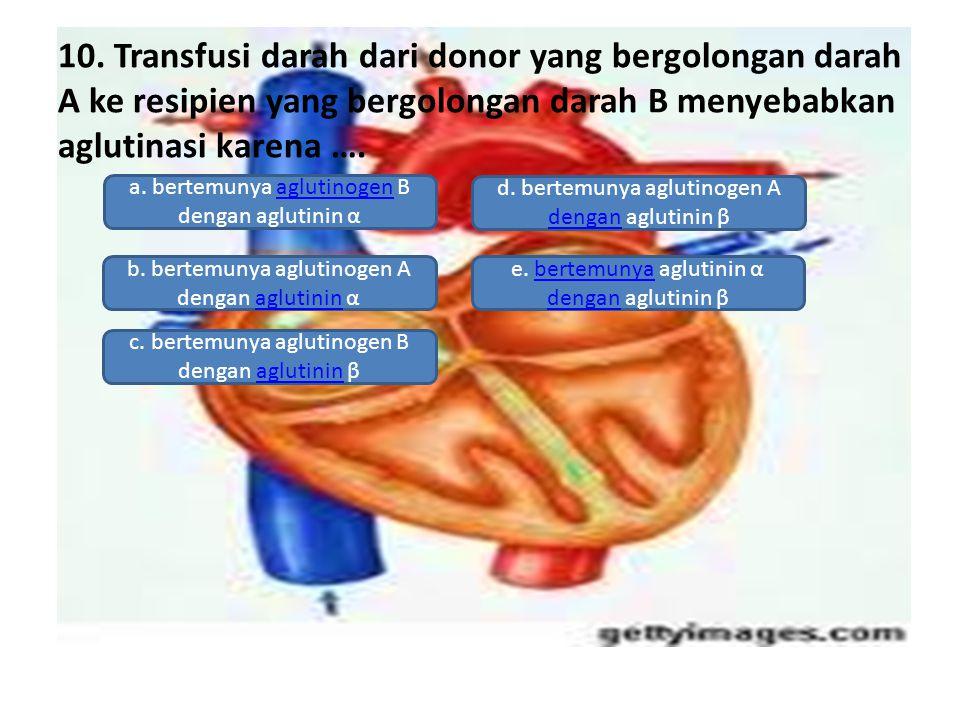 10. Transfusi darah dari donor yang bergolongan darah A ke resipien yang bergolongan darah B menyebabkan aglutinasi karena ….