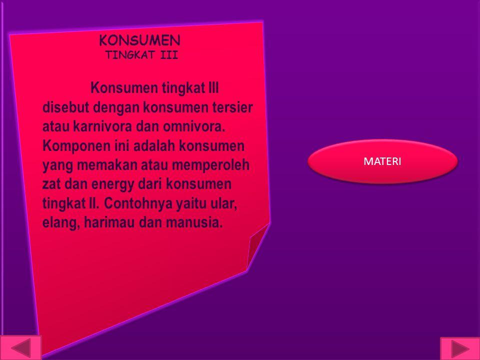 KONSUMEN TINGKAT III.