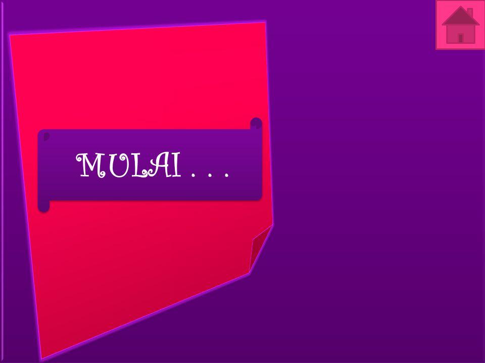 MULAI . . .