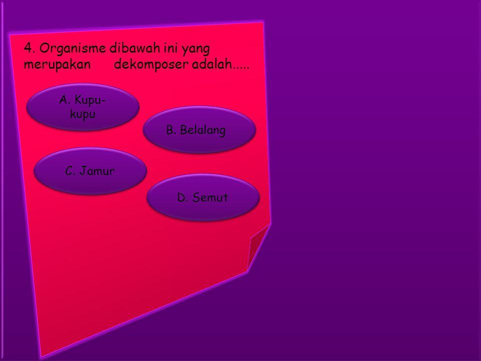 4. Organisme dibawah ini yang merupakan dekomposer adalah.....