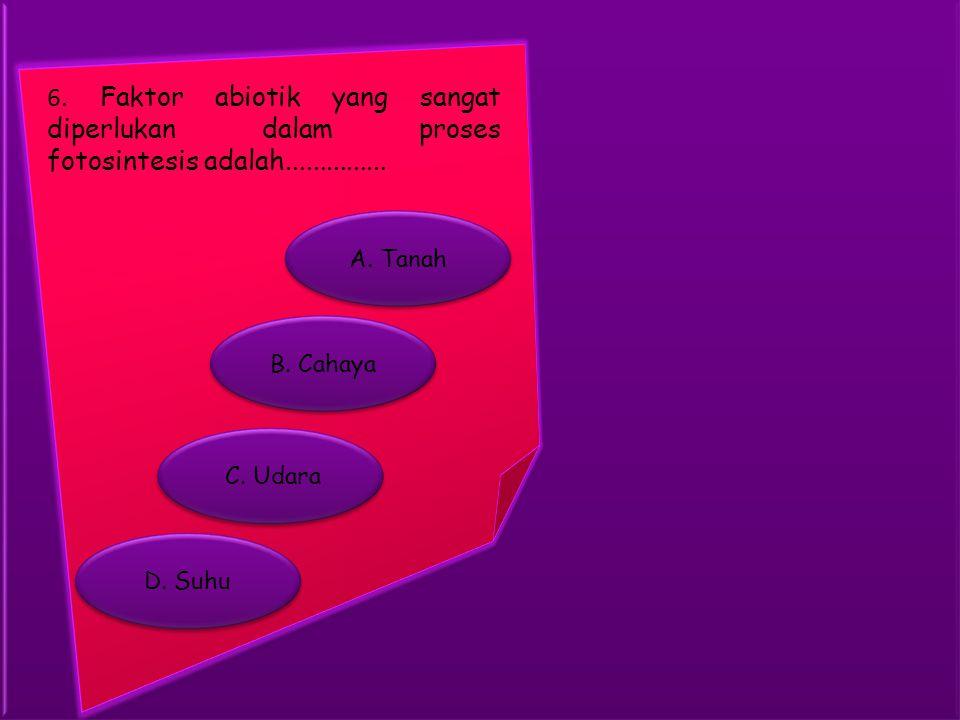 6. Faktor abiotik yang sangat diperlukan dalam proses fotosintesis adalah...............