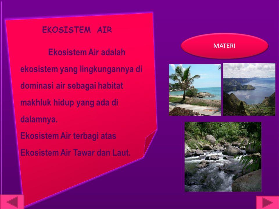 Ekosistem Air terbagi atas Ekosistem Air Tawar dan Laut.