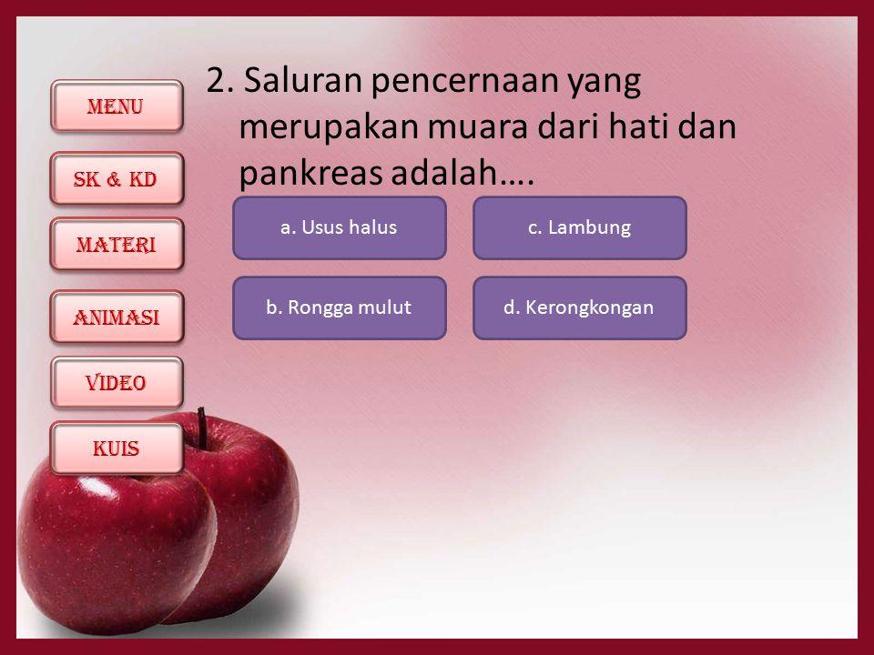 2. Saluran pencernaan yang merupakan muara dari hati dan pankreas adalah….