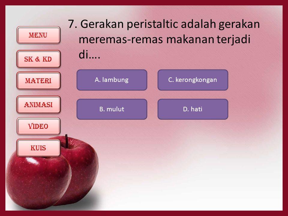 7. Gerakan peristaltic adalah gerakan meremas-remas makanan terjadi di….