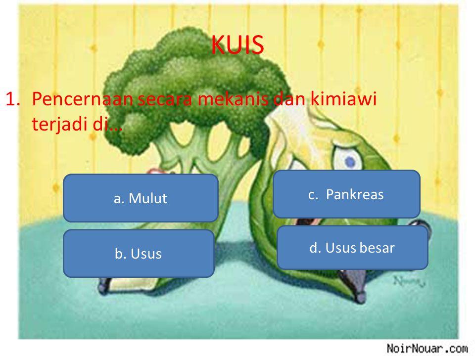 KUIS Pencernaan secara mekanis dan kimiawi terjadi di… c. Pankreas