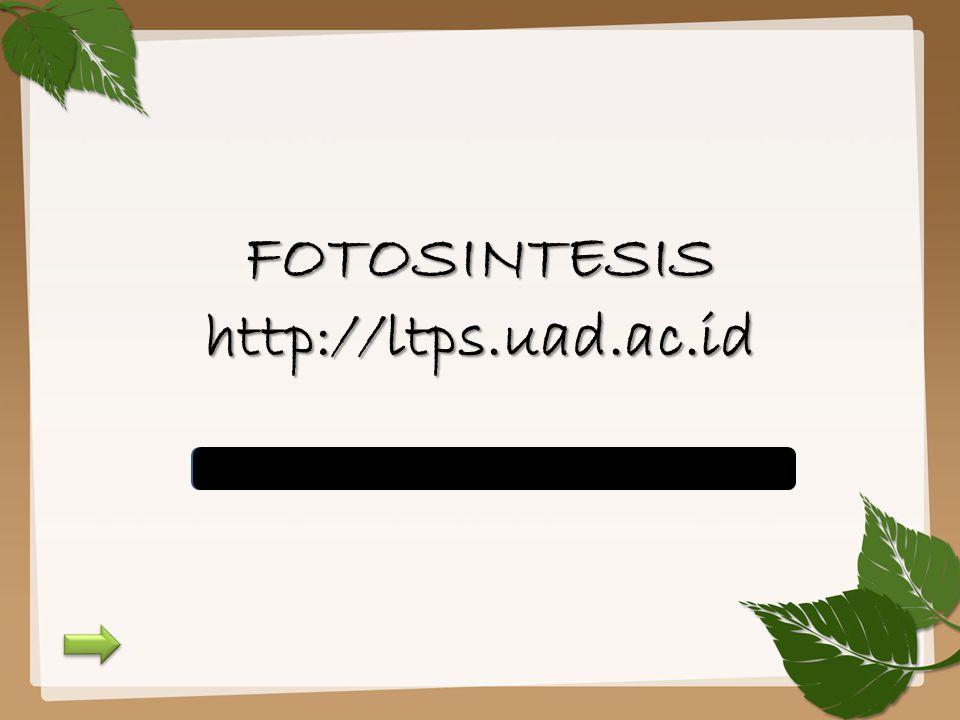 FOTOSINTESIS http://ltps.uad.ac.id