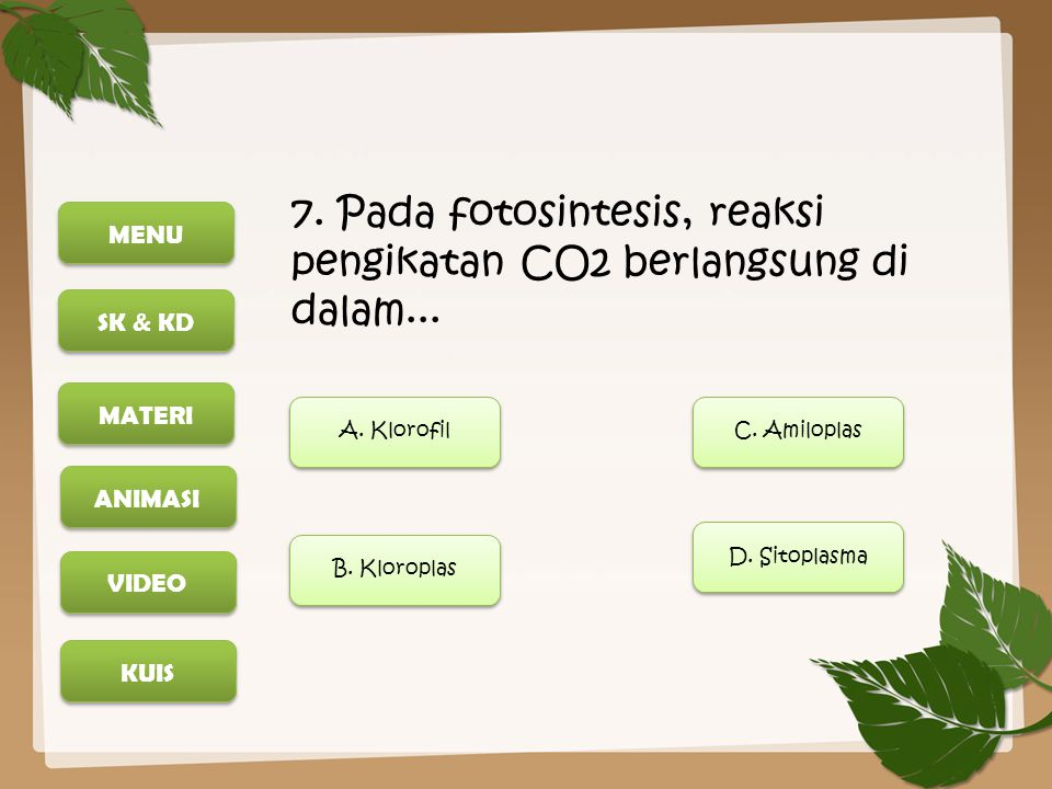 7. Pada fotosintesis, reaksi pengikatan CO2 berlangsung di dalam...