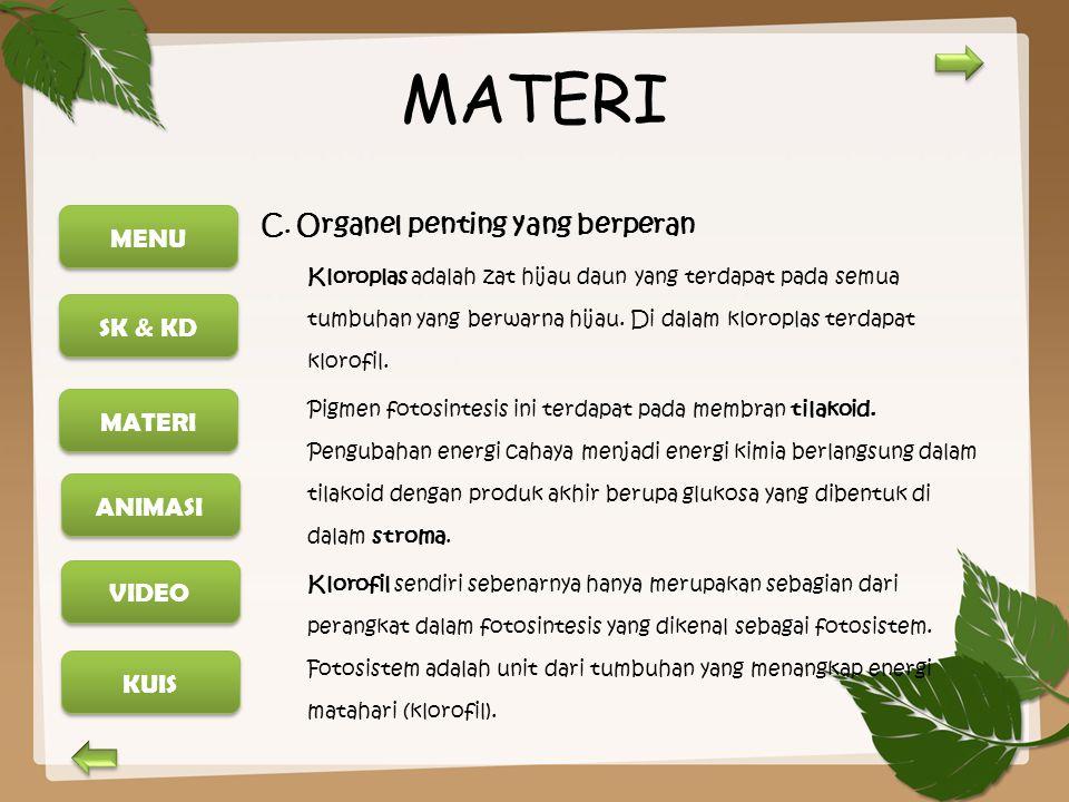 MATERI C. Organel penting yang berperan