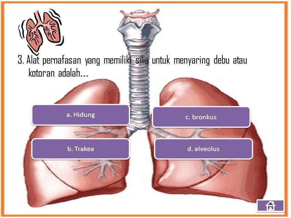 3. Alat pernafasan yang memiliki silia untuk menyaring debu atau kotoran adalah...