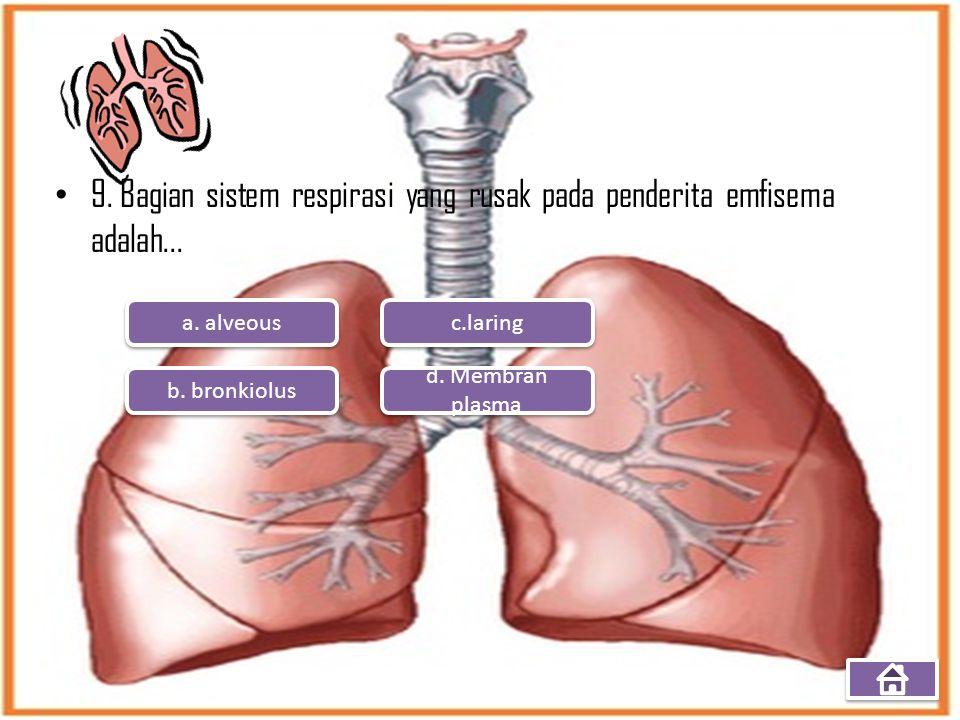 9. Bagian sistem respirasi yang rusak pada penderita emfisema adalah...